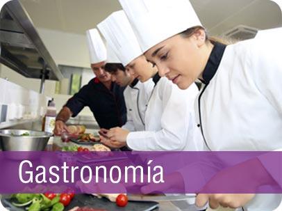 lic-gastronomia